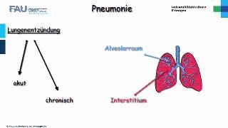 Medcast - Innere Medizin - Pneumonie 1 preview image