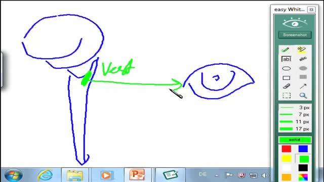 Sensomotorik III: Blickbewegungssteuerung; Trigeminussystem preview image