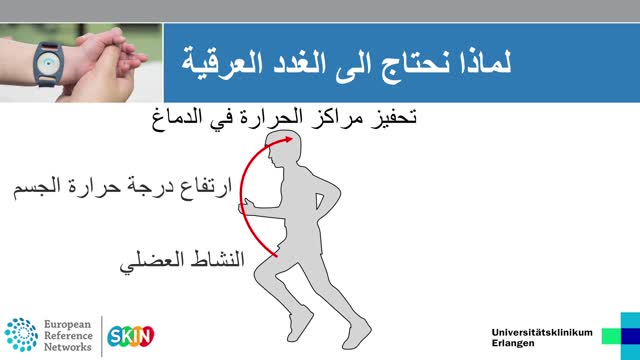 Ektodermale Dysplasie Arabisch preview image
