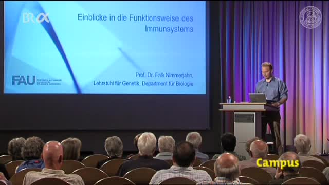 Einblick in die Funktionsweise des Immunsystems preview image