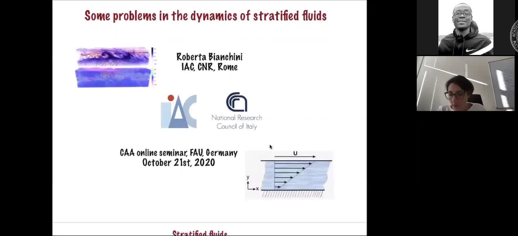 Some problems in the dynamics of stratified fluids (Roberta Bianchini, Istituto per le Applicazioni del Calcolo) preview image
