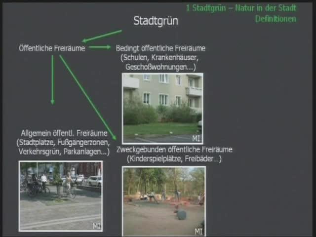 Vielfalt und Bedeutung des Stadtgrüns - Geplantes und Wildes preview image