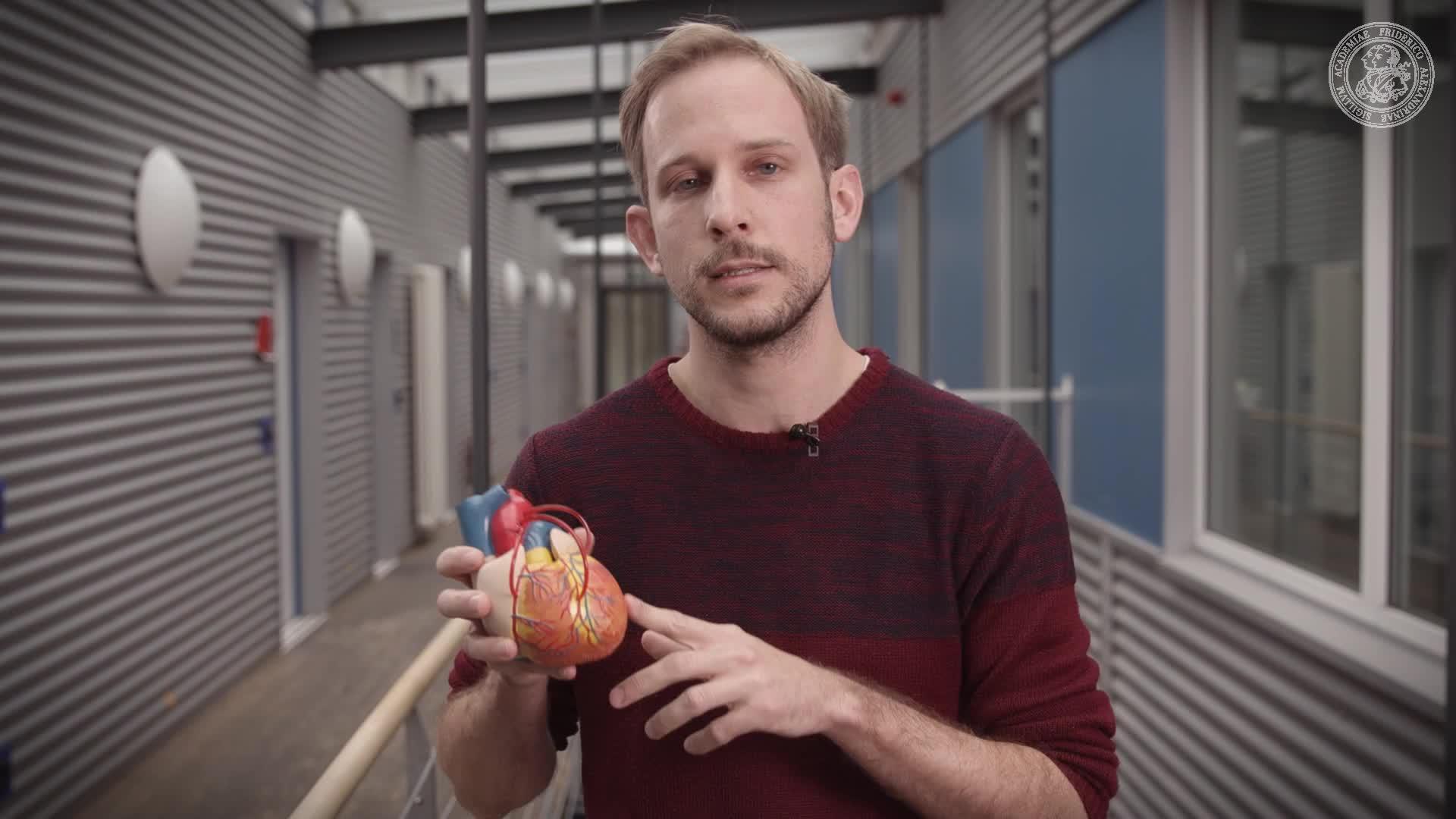 2 Minuten Wissen - Pflaster fürs Herz preview image