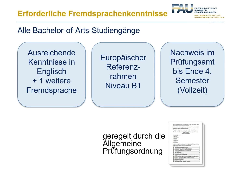 Fremdsprachenkenntnisse im Bachelorstudium preview image